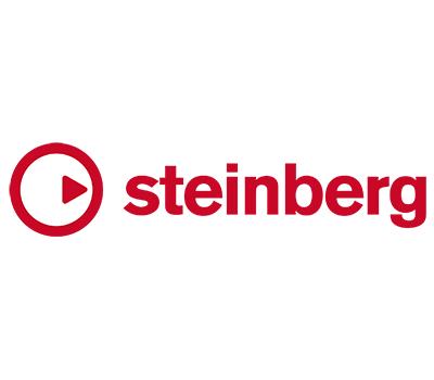 steinberg - Creativity First